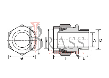 flameproof cable glands 1